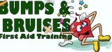 Bumps And Bruises First Aid Training Logo