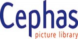 Cephas Picture Library Limited Logo